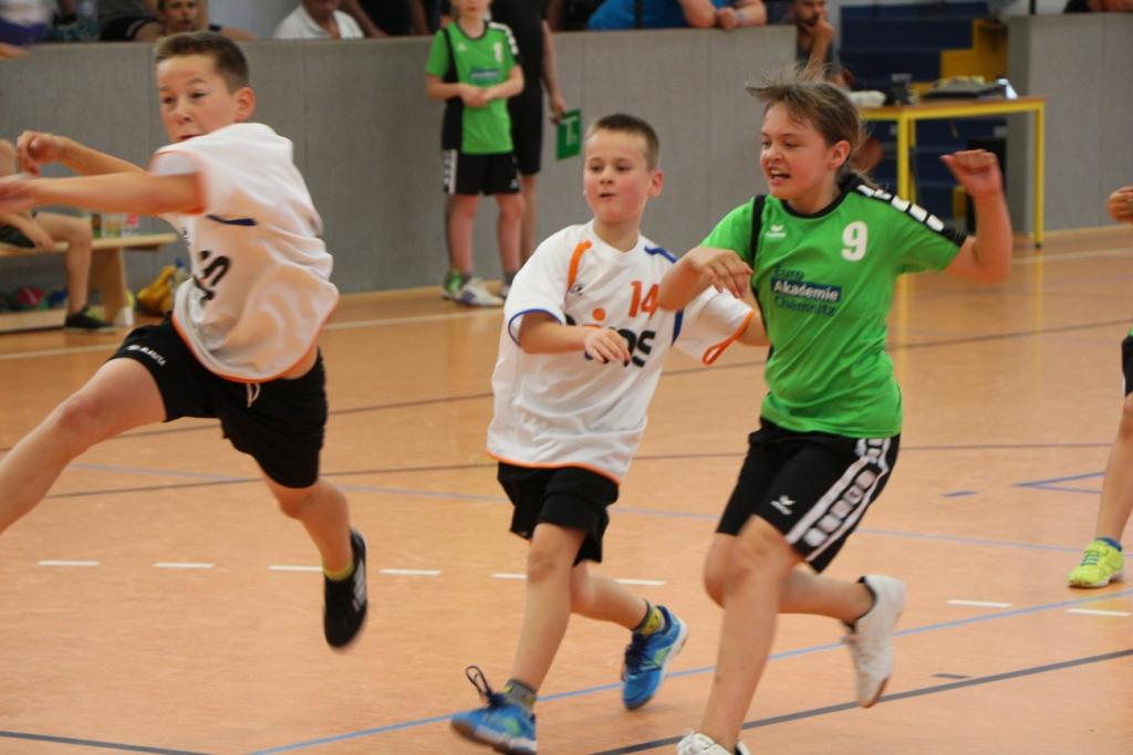 Tsv Zschopau Handball